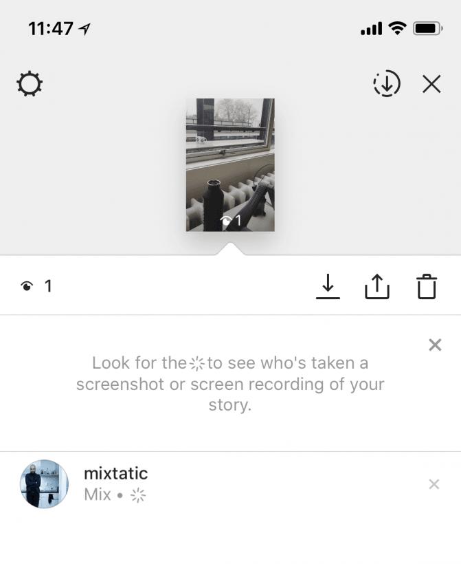 Instagram's Screenshot Alert