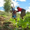 Kitovu Wants to Solve Africa's $100bn Agriculture Problem!