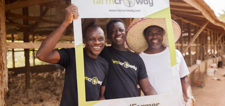 #FarmInMyPocket: The Farmcrowdy Mobile App is One Investment Tool You Should Have