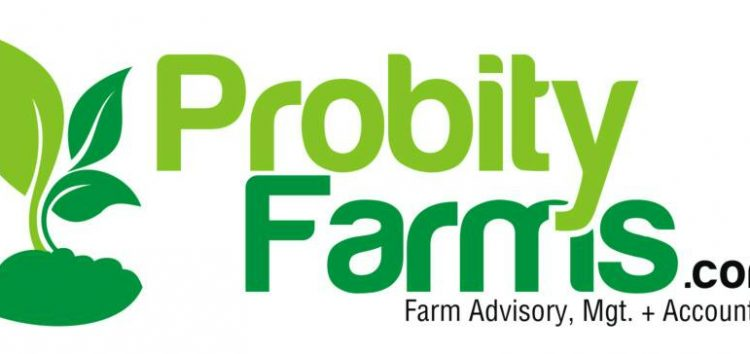 Probity Farms is the Latest Startup Looking to Tackle Agricultural Problems in Nigeria