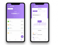 Nigerian CryptoCurrency App 'BuyCoins' Hits Milestone; Processes Over N500 Million Worth of Cryptocurrency in 3 Months
