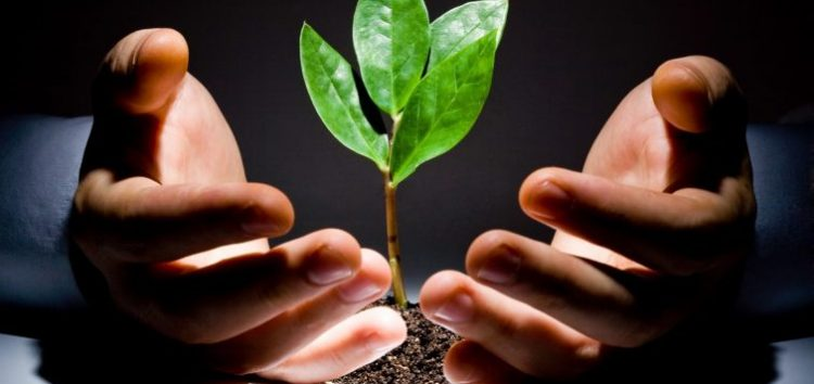 Business Tips: Here are 3 Growth Strategies You Should Employ for Your Startup