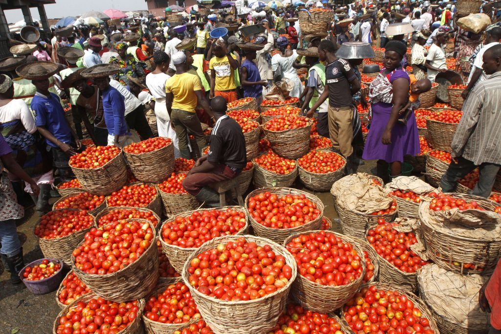 Tomatoes are displayed in baskets for sale at a local food market in Lagos