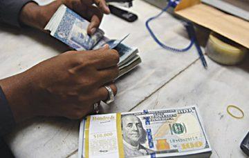 PiggyVest Unveils Flex Dollar, an FX Investment Service. Here is How it Works