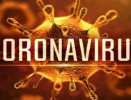 Coronavirus: How an Actual Biological Bug is Ravishing the Global Tech Space