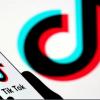 Is TikTok Really a Parasitic Platform as Reddit CEO Steve Huffman Claims?