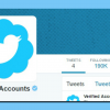Threat, Hard Work or Just Luck? How Can You Stand a Chance of Getting Verified on Twitter?