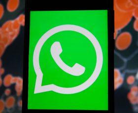 'Say Hello'-WHO Creates WhatsApp Chatbot to Fight Misinformation Amid Coronavirus Pandemic