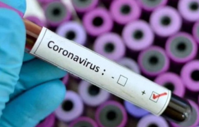 Wellvis's COVID-19 Triaging App Determines Your Risk of Having ...