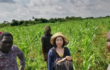 From Farmcrowdy to Thrive Agric, Here are 6 Agric Investment Platforms With Healthy Risk and RoI Levels