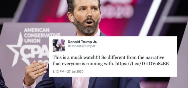 Stella Immanuel's Video, Trump Jr's Suspension and the Question of Information vs Misinformation on Social Media