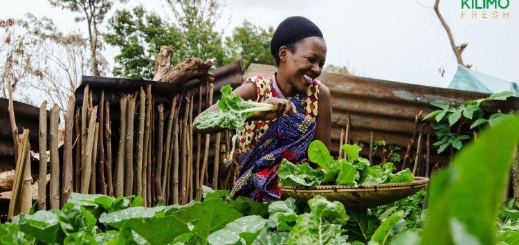 Tanzania's Kilimo Fresh Wins $50,000 MEST Africa Challenge 2020 Prize