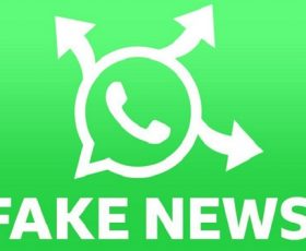 WhatsApp is Testing its new 'Search the web' Feature Which Help Users Identify False Information