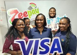 Visa Partners Ghana's Zeepay to Ease Diaspora Payments Through Direct Money Transfer