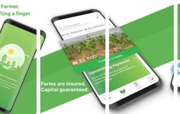 Review: Thrive Agric Makes Agric Investment Easy But the Options are Too Few
