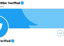 Twitter Account Verification: Users Want ID Validation and Profile Lock Criteria