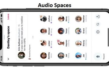 All You Need to Know About  Twitter's Upcoming Audio Spaces Feature