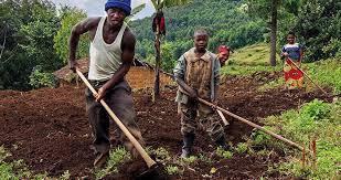 Pula Advisors   Fund for Rural Prosperity