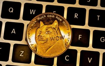 As Dogecoin Appreciates Following Elon Musk Tweet, Here's all You Need to Know About the Altcoin