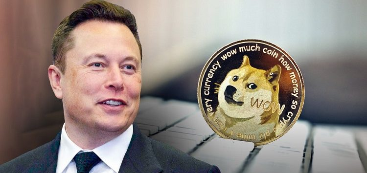 Elon Musk's 'hustle' remark and other possible reasons why Dogecoin price crashed