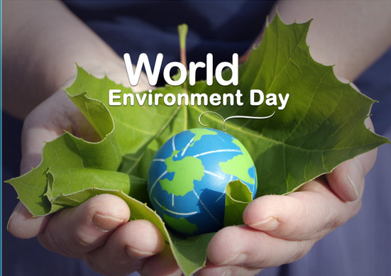 World Environmental Day; 10 Top and Upcoming Green Tech Companies in Nigeria