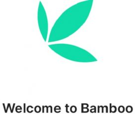 Court temporarily unfreezes Bamboo accounts to enable the fintech pay salaries