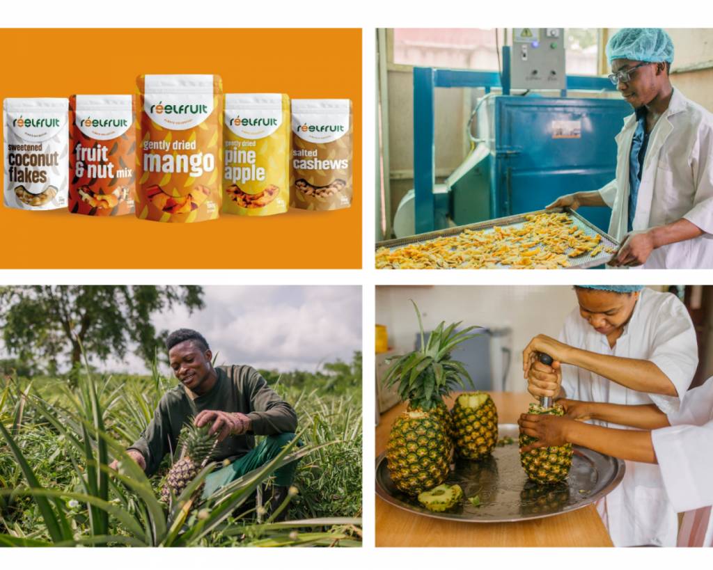 Reelfruit raises $3m series A funding to expand production capacity